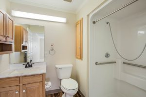 Bathroom with toilet, sink vanity, shower with handrails, and mirror